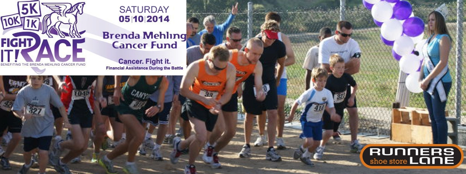 On Saturday, May 10, 2014, join us for the 13th annual Fight It! 5K Race and Walk-a-Thon, benefiting the Brenda Mehling Cancer Fund. We are very excited to be offering a 10K, 5K and 1K Fun K for kids and adults of all ages!
